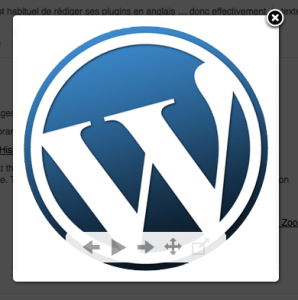 How To View Images Zoom In WordPress