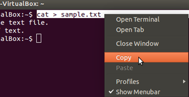 How To Use Copy And Paste Text In Linux-01